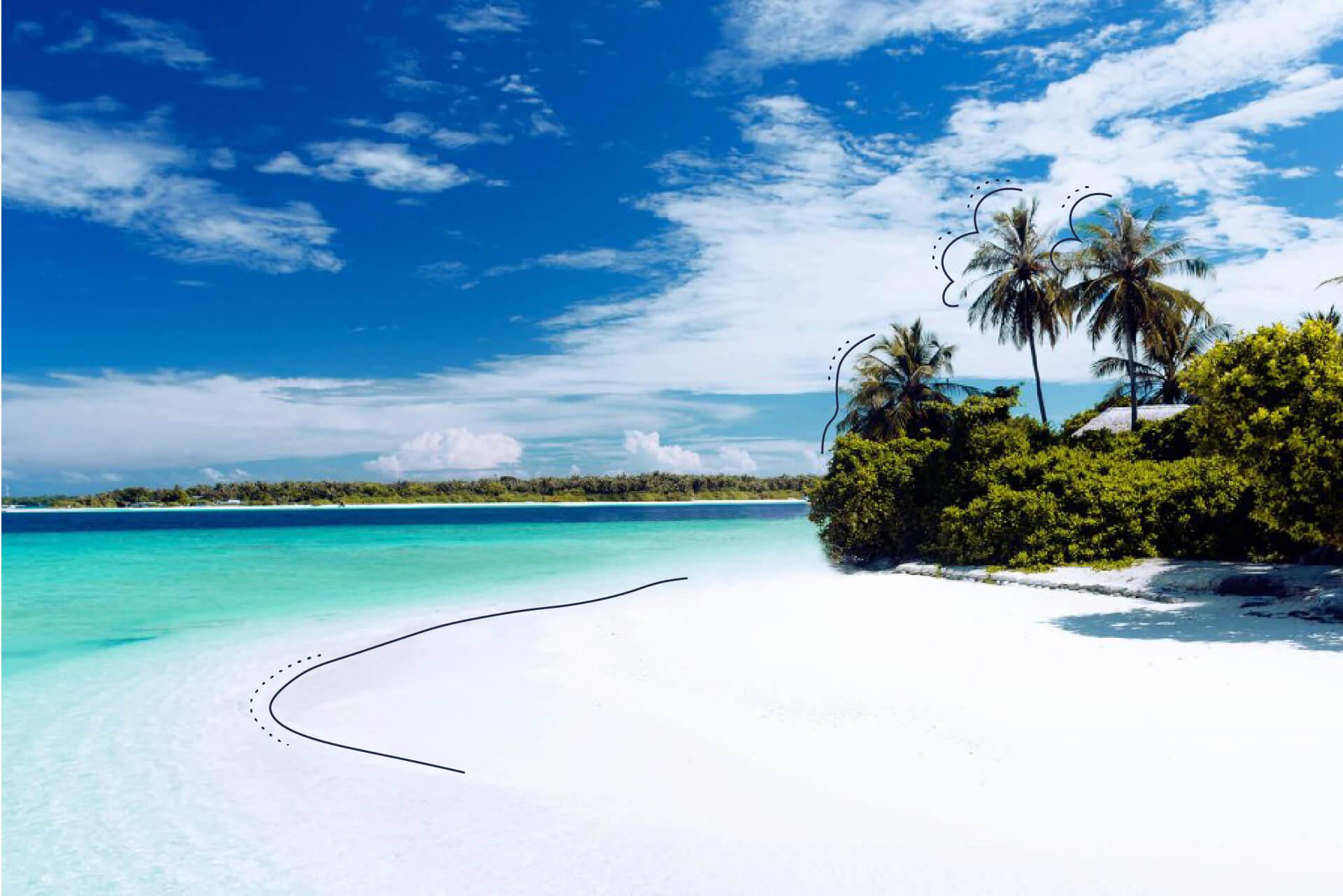 Blauer Himmerl, türkises Wasser, weißer Strand und grüne Palmen. | eggheads.net