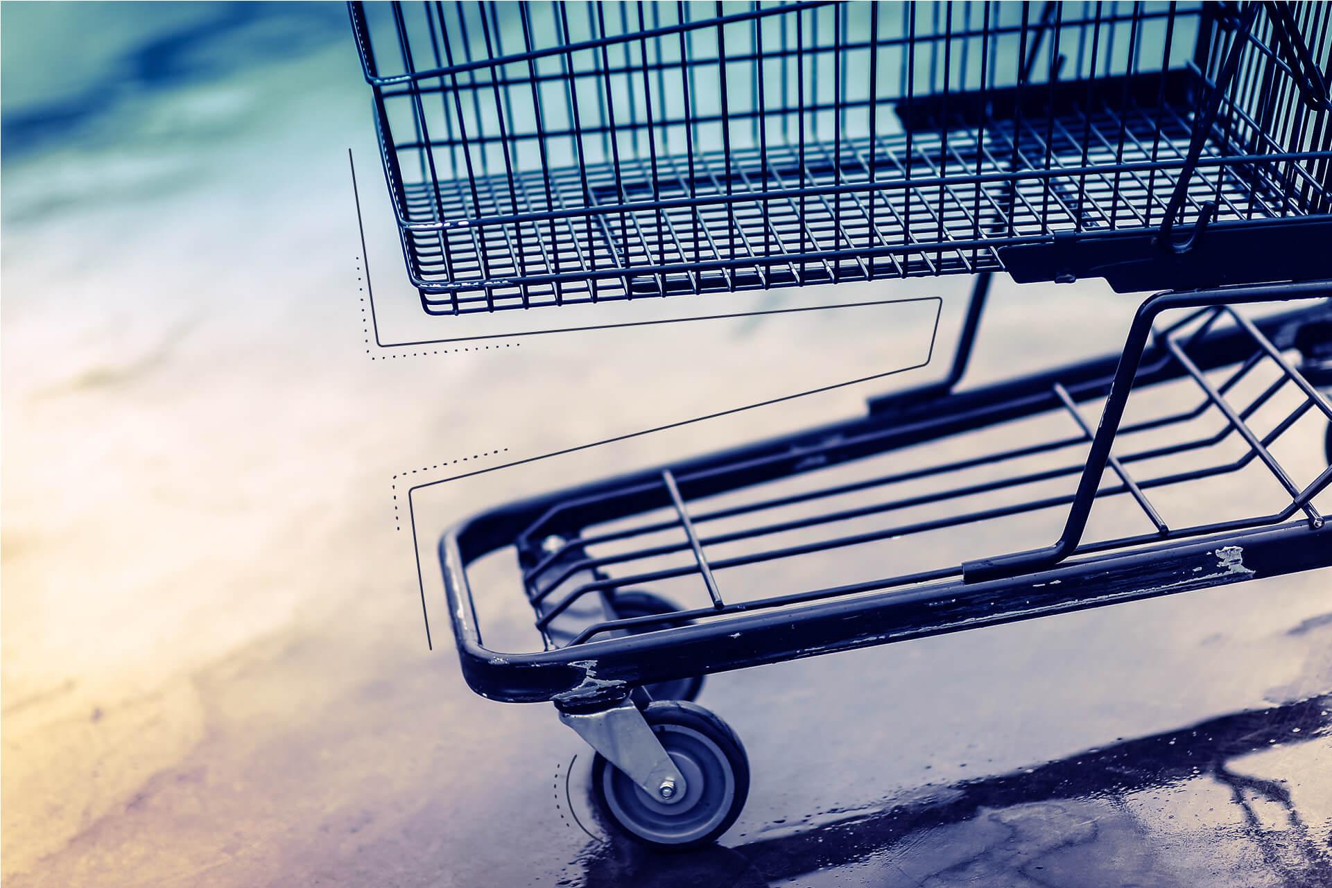 Ein leerer Einkaufswagen | eggheads.net